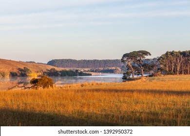 Hopkins River passing through grasslands in early morning. Warrnambool, Australia