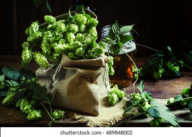 Hops in canvas bags, selective focus
