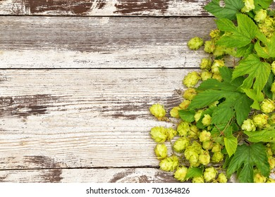 Hops with leaves on wooden table