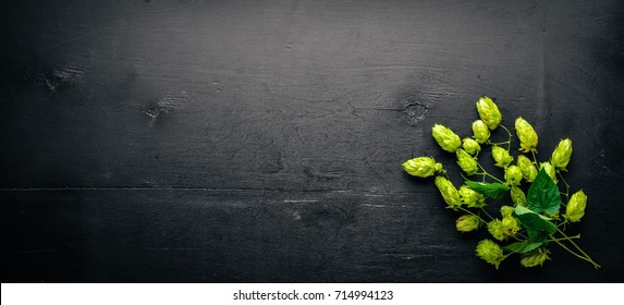 Hops on a wooden background. Top view. Free space for text.