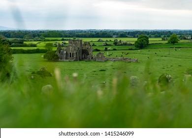 Hore Abbey. Historic Landmark located in the city Cashel. Ireland.