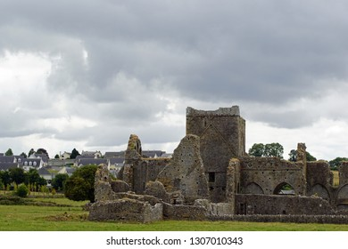 the Hore Abbey is an old ruin opposite the Rock of Cashel.