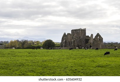 HORE ABBEY,CASHEL, IRELAND - A ruined Cistercian monastery near the Rock of Cashel, County Tipperary. 'Hore' is thought to derive from 'iubhair' - yew tree.