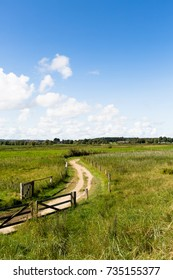 horizon between blue sky and green meadow with path