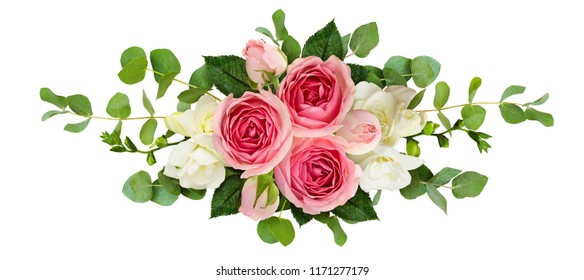 Horizontal arrangement with pink roses, freesia flowers and eucalyptus leaves isolated on white. Top view. Flat lay.