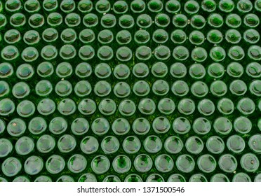horizontal background of hundreds of green glass bottles upside down