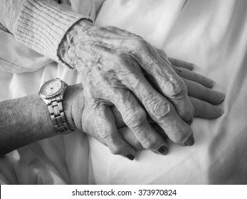 horizontal black and white image of an elderly woman's hand holding a younger woman's hand, with copy space / Comforting Hands - Black and White