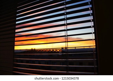 Horizontal blinds, letting the natural light shine through.