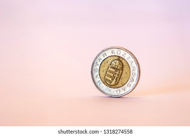 Horizontal close-up of the obverse side (head) of the coin of one hundred 100 Forint on the neutral blurred background. Budapest, Hungary.