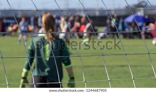 Horizontal composition of a soccer goalie through goal net with shallow depth of field.