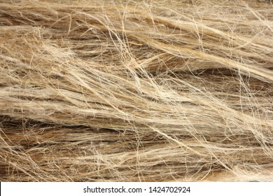 Horizontal dry flax fibers, production of linen fabrics - texture for the background