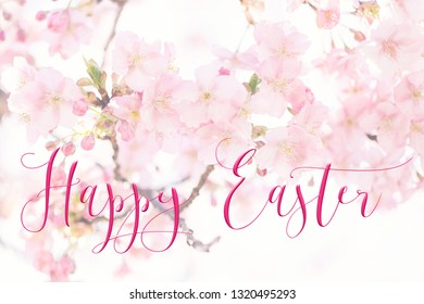 Horizontal Easter background with pretty pink blossom, and 'Happy Easter' quote. Perfect for Easter Social Media campaigns.