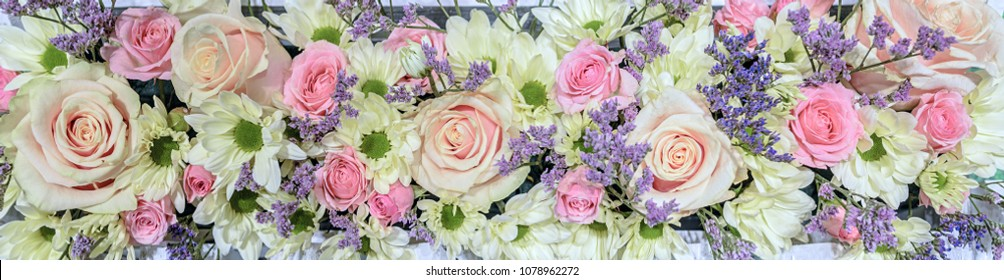 Horizontal flower arrangement. Delicate tea-hybrid roses of pink color and white the chamomile chrysanthemums with a green core, Bacardi variety.