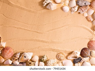 Horizontal frame of sea shells over beach sand.  Makes for a great vacation template.
