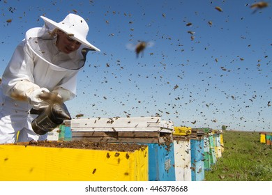 Horizontal front view of a beekeeper smoking the honeycomb of a beehive with bees swarming around them