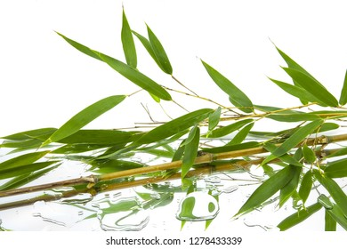 horizontal green leaves and branches of bambu reflected in mirror and water drops on white background