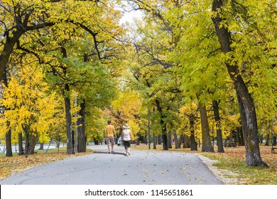 horizontal image of a caucasian couple walking on a paved pathway in the park surrounded by beautiful fall coloured trees.
