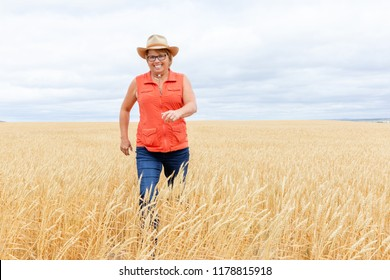 horizontal image of a caucasian woman laughing as she is walking through a wheat field on a bright sunny fall day.