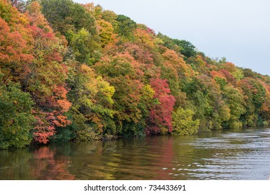 Horizontal image of fall colors in green, orange and red. Autumn tones on the Mississippi River in Minneapolis Minnesota USA