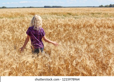 horizontal image of a little young caucasian girl with long blone hair running in the wheat field facing away from camera on a very bright sunny day.