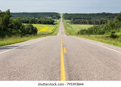horizontal image of a long straight empty highway flanked by green trees going up the hill into the distance in the summer time.