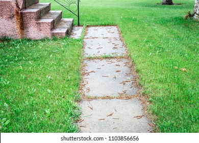 horizontal image of an old worn out and broken cement side walk surrounded by over grown green grass.