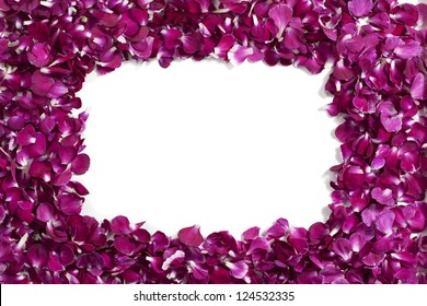 Horizontal image of purple carnation petals forming frame on a white background