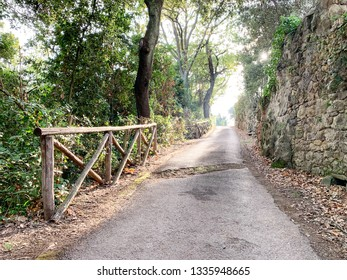 A horizontal image of a small, empty paved road in the countryside with green  trees and an old stone wall outside northern Rome, Italy.