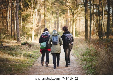 Horizontal image of three friends woman, walking in the forest on a hiking trail in a beautiful and sunny day of autumn.