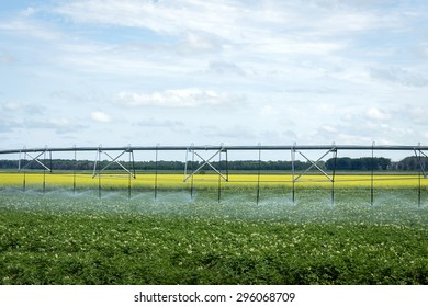 horizontal image of a water irrigation system sitting in the field watering the crop on farm land with a canola filled in the background under a blue cloud filled sky in summer time