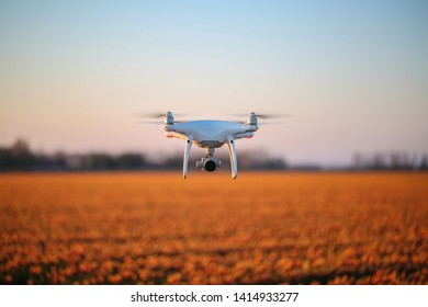 Horizontal image of a white drone with a camera hovering above an orange tulip field in bloom during springtime. The drone is in mid flight, propellors are turning with bokeh orange tulip background.