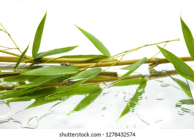 horizontal leaves and branches of bambu reflected in mirror and water drops on white background
