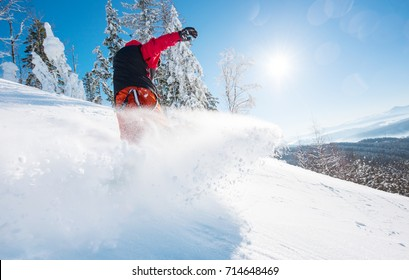 Horizontal low angle shot of a snowboarder riding the slope on a sunny winter day in the mountains. Snow in the air. Forest, blue sky and sun on the background copyspace freeride snowboarding