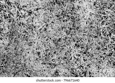 Horizontal orientation black and white image of ice crystals as an abstract background, with copy space