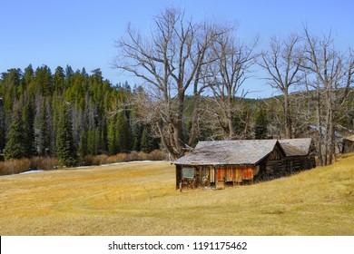 horizontal orientation color image of an abandoned cabin in a golden field, set in the mountains of Colorado, USA