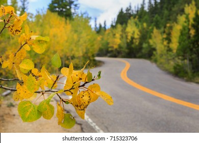 horizontal orientation color image with shallow depth of field and leaves in the foreground, with a highway and fall color in the background / Colorado Highways in Fall Season