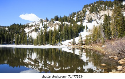 horizontal orientation color image of Silver Lake, Brighton, Utah, USA in springtime with snowy mountains and timber / Silver Lake, Brighton, Utah, USA in Spring