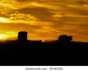 A horizontal photo of combines  heading into a sunset.
