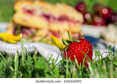 Horizontal photo with detail of ripe red strawberry. Fruit is placed on white towel in a garden with two portions of cherry cake. Next cherries are placed in background in bowl.