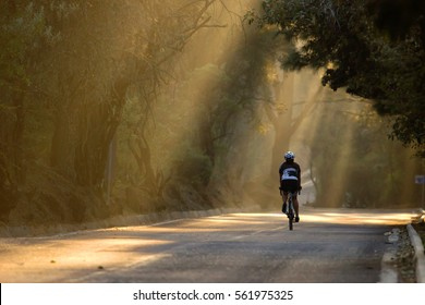 horizontal photo of a female cyclist riding a road bike during sunset in the forest with sunlight beams