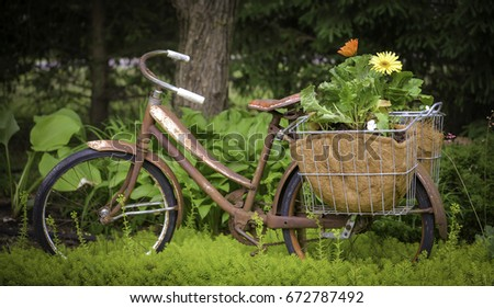 Simply Vintage bike baskets apologise, but