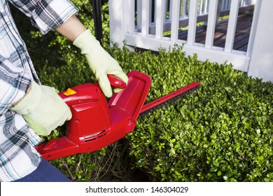 Horizontal photo of woman and power trimmer cutting the hedges with patio in background