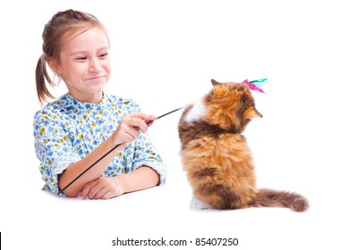 horizontal portrait of lovely girl playing by stick with funny tortoise British kitten on isolated white background