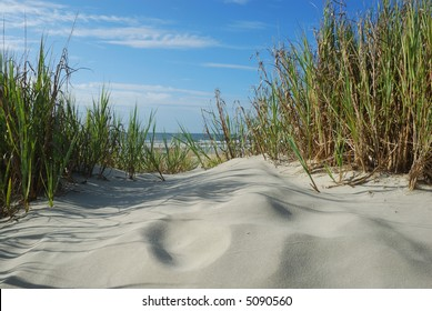 Horizontal Scenic Beach view from sandunes