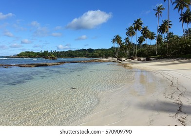 A horizontal shot of clear, blue water, a sandy beach, and palm trees at Playa Rincon, a beach in the Dominican Republic