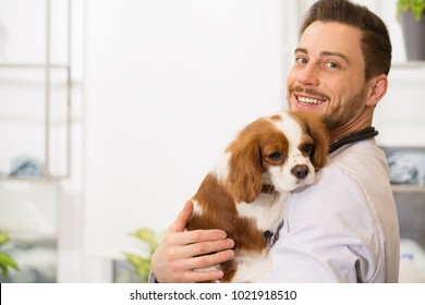 Horizontal shot of a handsome cheerful young male veterinarian smiling to the camera holding an adorable puppy copyspace emotions profession occupation job employment worker pet care medicine.