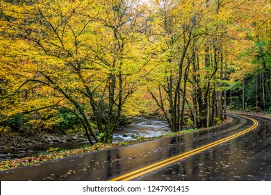 Horizontal shot of a road curving next to the Little River through Smoky Mountains Autumn color.