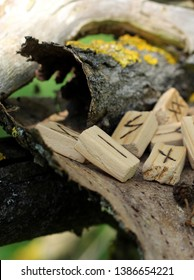 Horizontal. Side view on wooden runes, which lie on a dry bark from a tree. Runic Futhark in the element