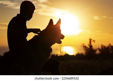 horizontal silhouette of young man and dog enjoying beautiful landscape , boy with a four-legged friend at sunset in a field, concept of healthy lifestyle