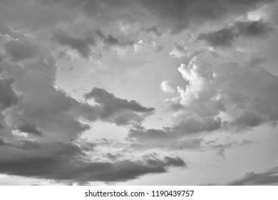 Horizontal soft focus image of black and white beautiful clouds with sky and little bird for nature or abstract background concept.